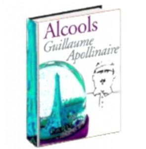 alcools-295x300 Alcools