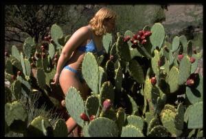 eve-in-cactus-70.4